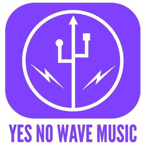 Logo-ynw-usb.jpg