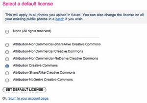 Fig. 2 - flickr user choose default.jpg